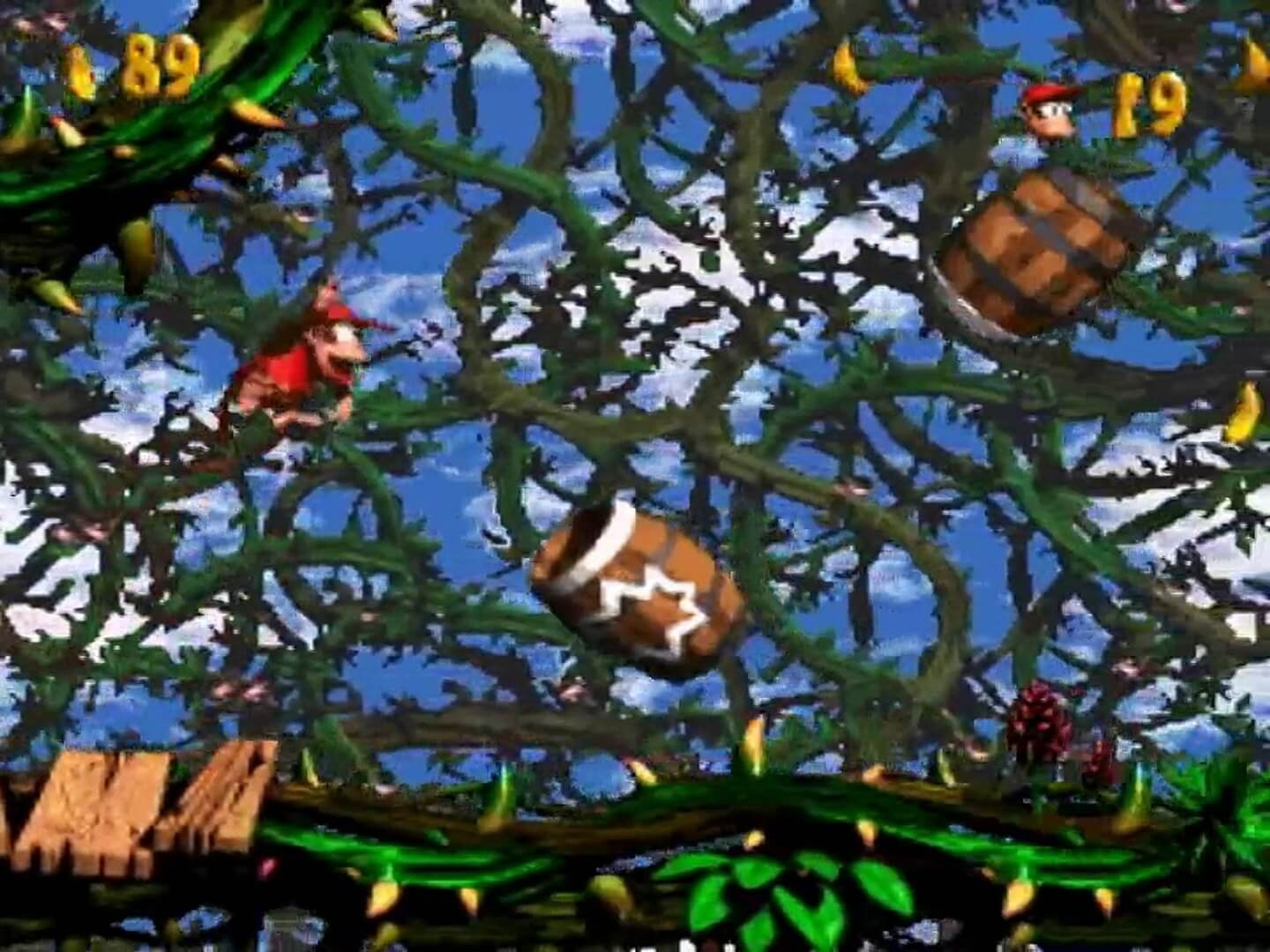 Donkey Kong Country 2: Diddy´s Kong Quest: Diddy Kong im Brombeerstrauch-Level