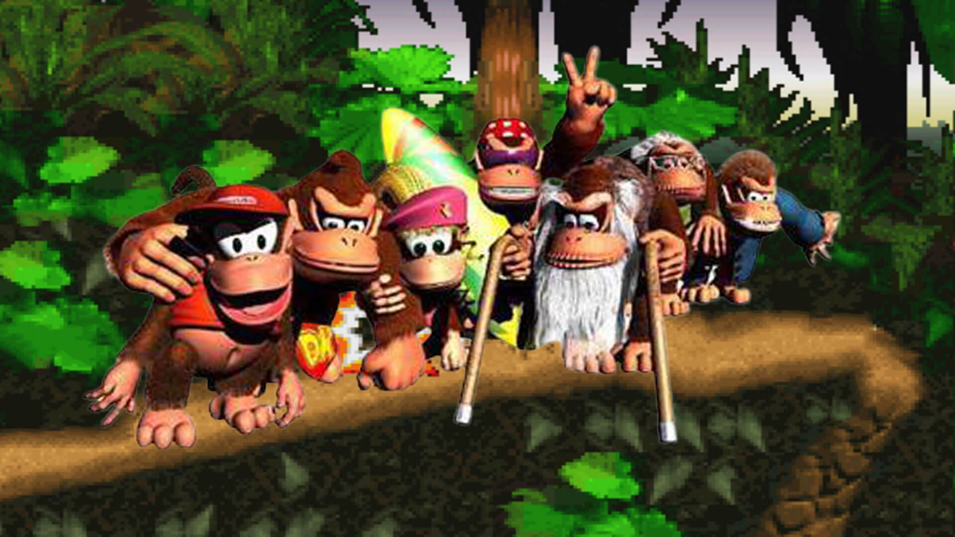 Donkey Kong Country 2: Diddy´s Kong Quest: Kong Familien Foto
